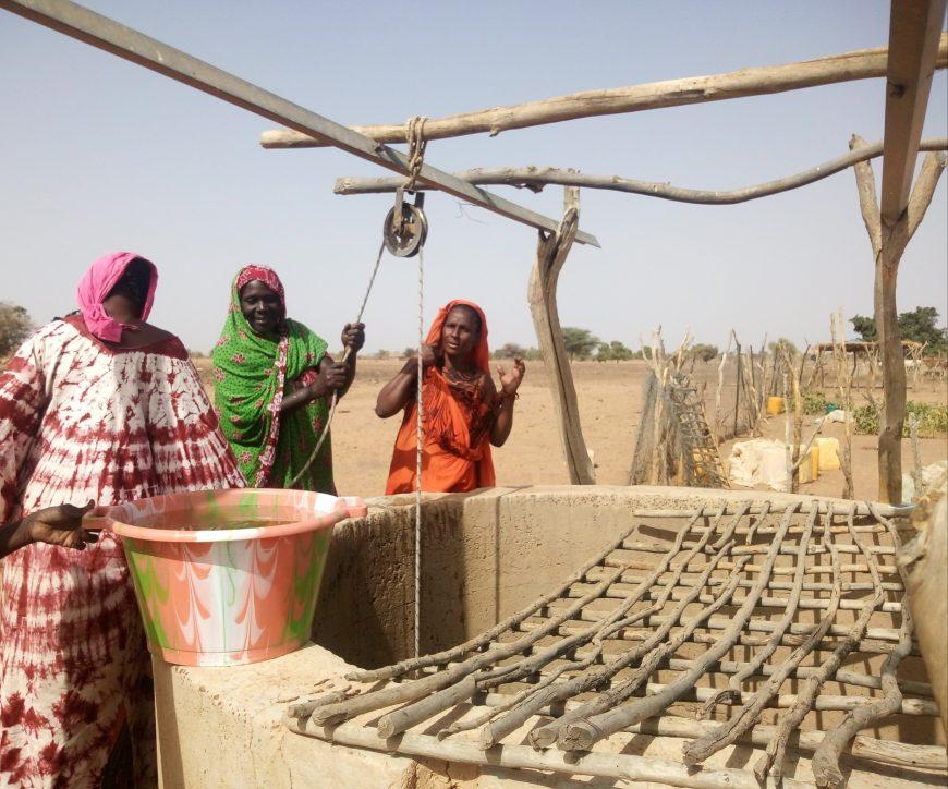 Avec le remplissage direct du bassin à partir du puits grâce au kit solaire, les femmes n'ont plus besoin de faire de gros efforts pour arroser leurs plants.