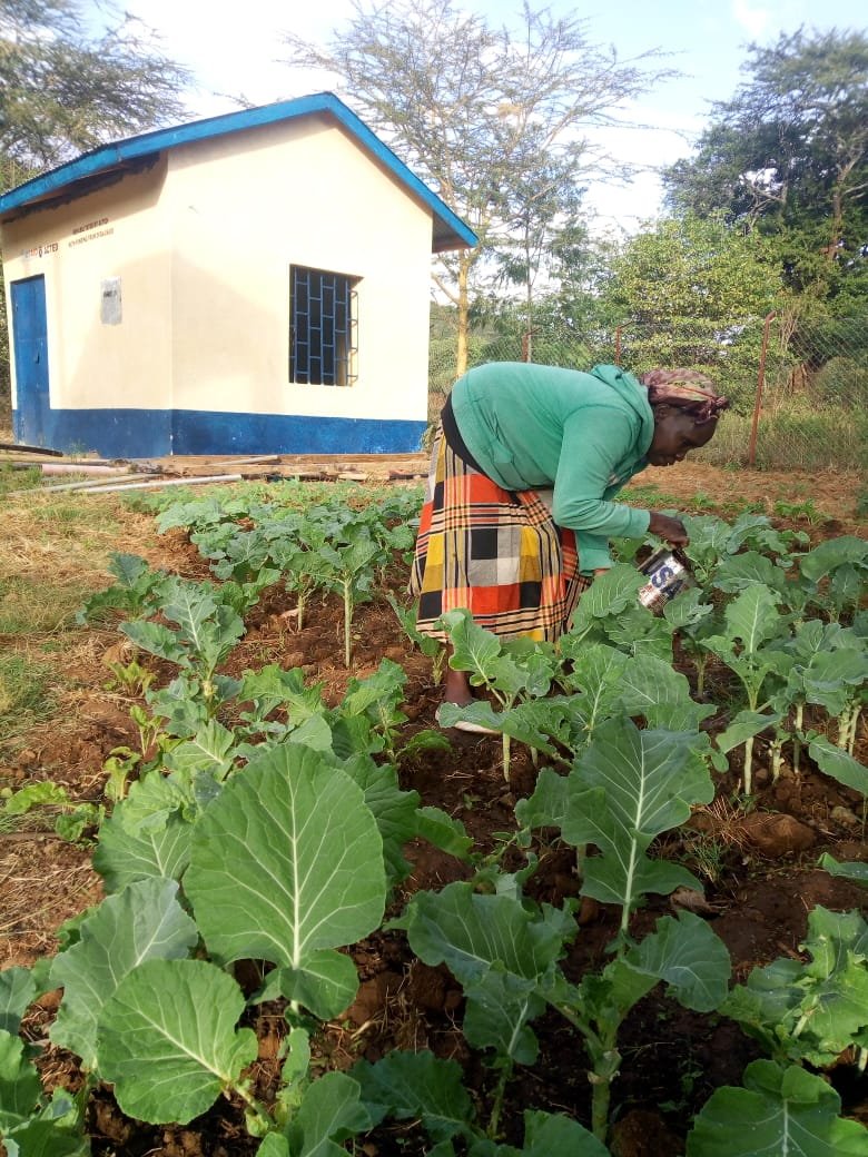 Kenyan beneficiary waters her garden