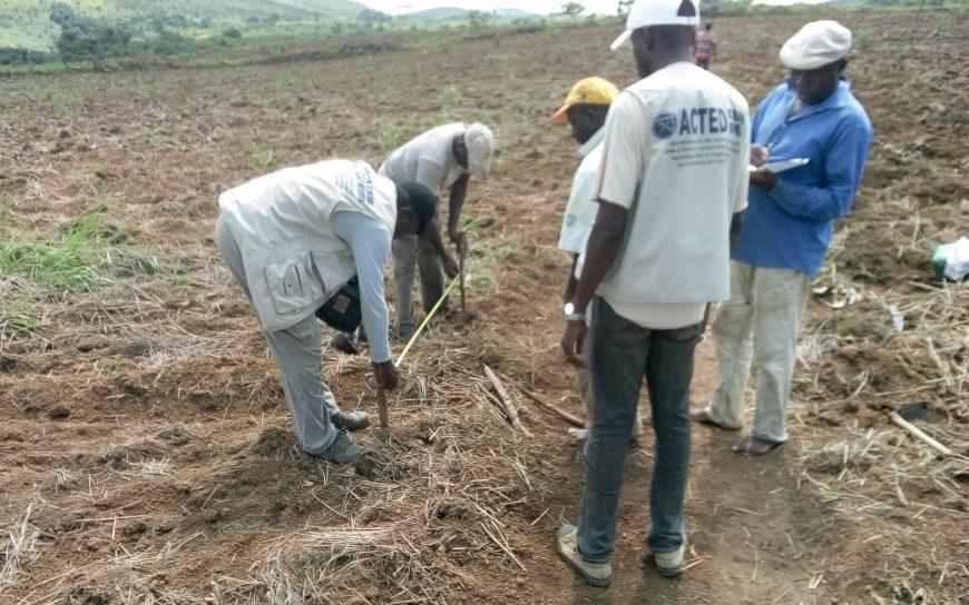 Renforcement des capacités des groupements communautaires sur les techniques agricoles améliorées dans le village Moubotsi Favre, district de loudima